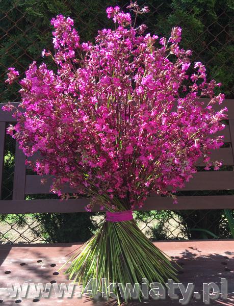 Kwiaty z dostawą Warszawa