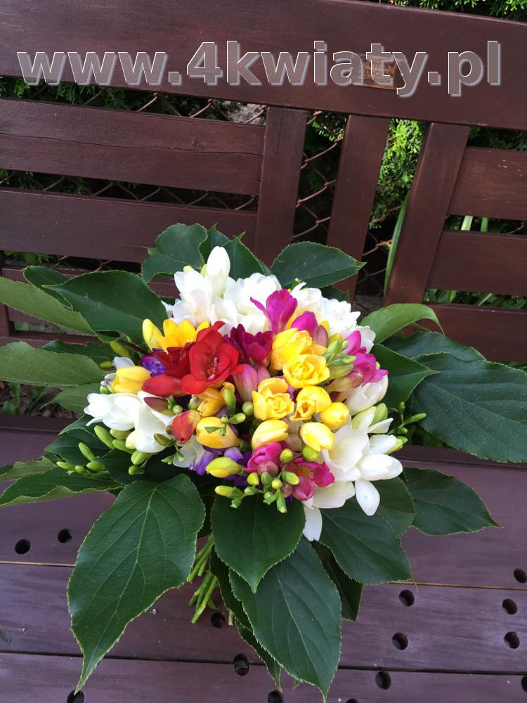 Bukiet kolorowych frezji. Kwiaty z dostawą.