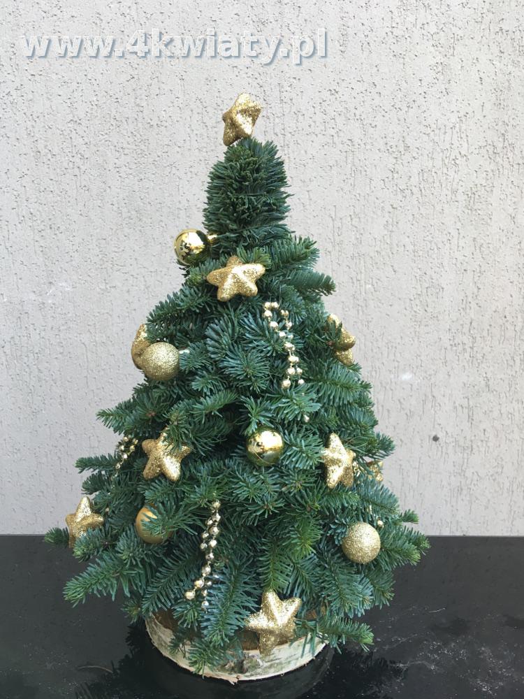 choinka konstruowana z gałązek jodły mała dekoracje złote gwiazdy na plastrze brzozy
