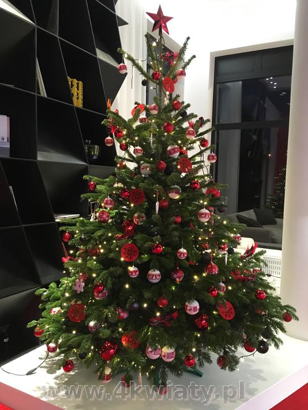 Choinka ubrana białe i czerwone dekoracje wzory bożonarodzeniowe jelenie jodła kaukaska do biura firmy dostawa do domu