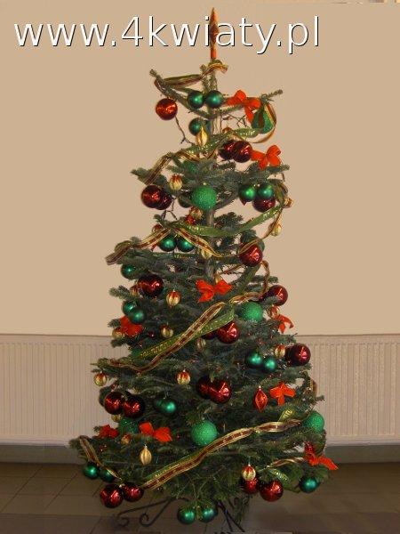 choinka czerwona, zielona, złota z dostawą stojak lampki dekoracje bożonarodzeniowe