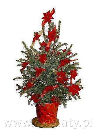 choinka świerk w donicy czerwona dekoracja sztuczne kwiaty