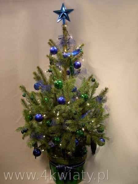 choinka świerk w donicy dekoracje sielone i niebieskie