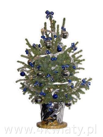 choinka w donicy świerk srebrno niebieska granatowa bombki kokardki łańcuchy