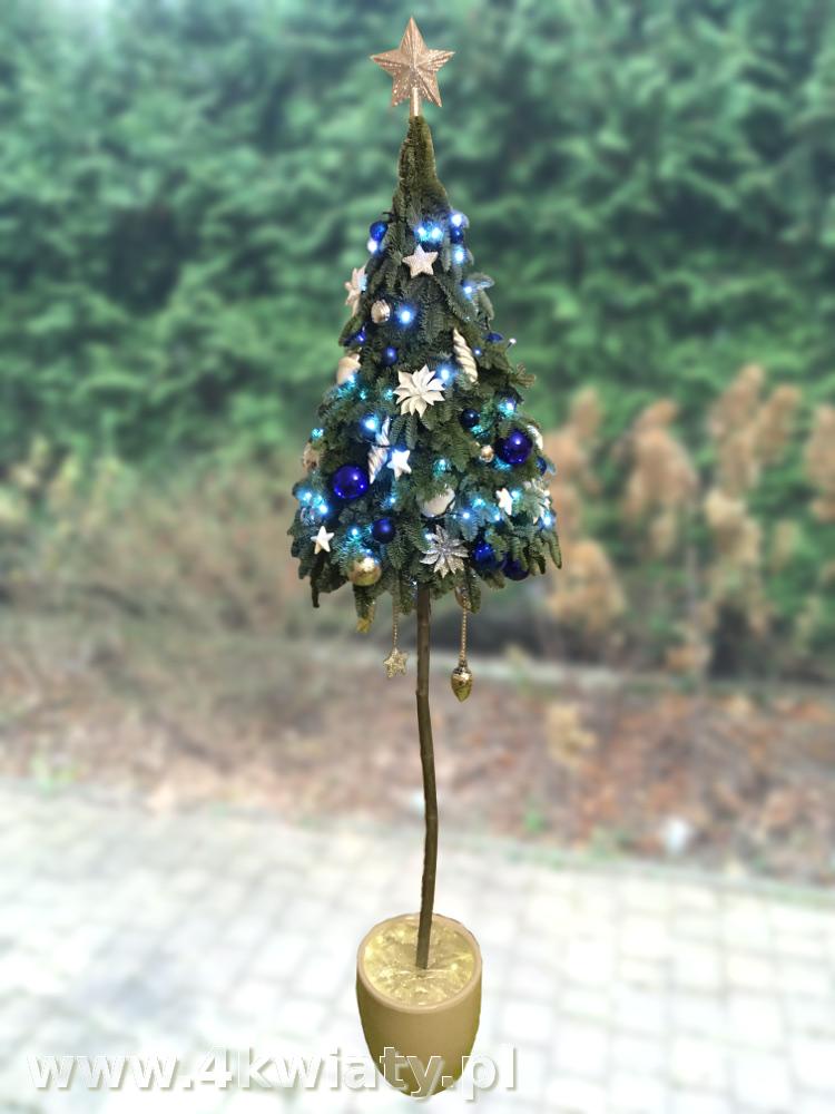 Choinka konstruowana z gałązek jodły nobilis żywa na pniu nóżce dekoracje niebieskie i srebrne białe donica ceramiczna