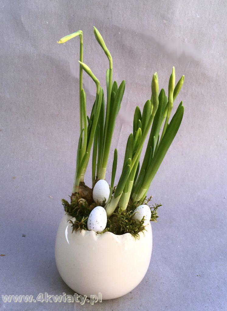 Kompozycja wielkanocna, stroik z narcyzami, jajeczka, strusie jajo, kwiaty cebulowe dostawa Warszawa i okolice