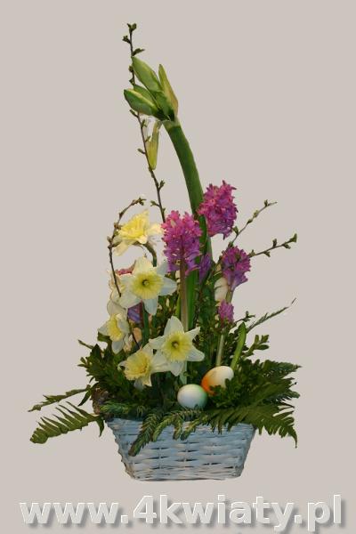 Stroki wielkanocny z żywych ciętych kwiatów, narcyzy, amarylis hipeastrum zwartnica, hiacynty. Dostawa w Warszawie